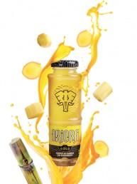 design-OriOra-Gold-prima-versione